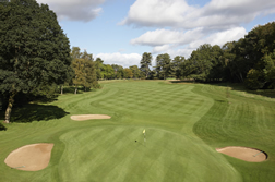 sonning golf course green sunny day