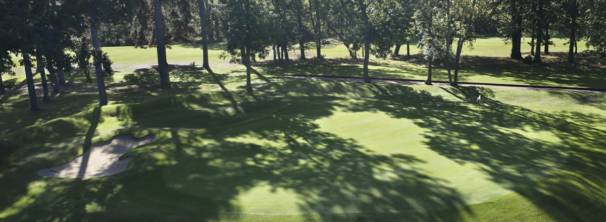 shadow from trees on sonning golf course